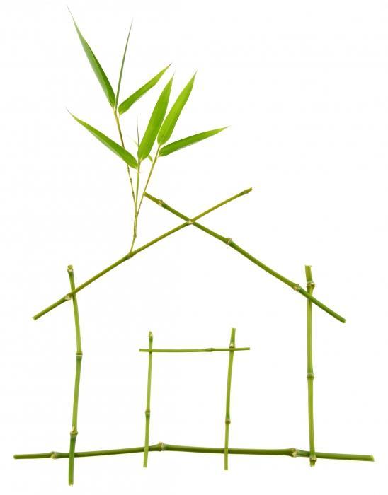 Matériaux : portrait d'une maison 100 % écologique