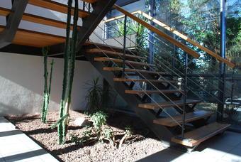 Réussir un jardin d'intérieur
