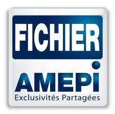Fichier Amepi Hérault : une base de données des biens vendus