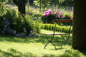 Arroser son jardin en économisant l'eau