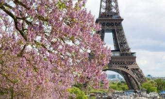 Le patrimoine immobilier de PARIS dévoilé