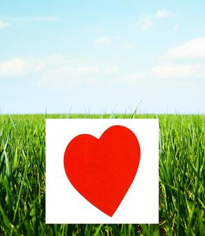Il trouve l'amour grâce à un panneau devant sa maison