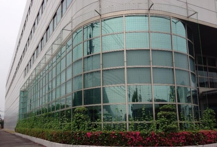 Des plantes pour climatiser les bâtiments