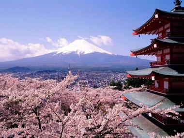 Des terrains à 1,2 euro le mètre carré au Japon