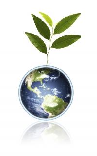Efficacité énergétique : les solutions à adopter