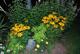 Lampes solaires pour décorer son jardin