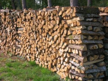 Pourquoi opter pour le chauffage au bois ?