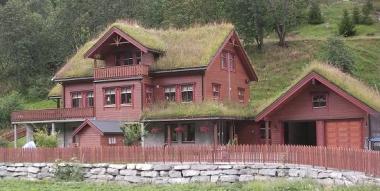Le marché de la toiture végétalisée de plus en plus prospère en France