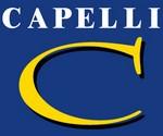 Agence Groupe Capelli 69